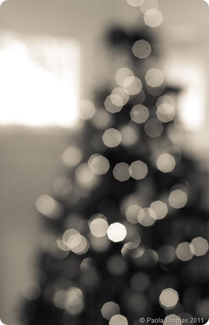 christmastreebokeh (1 of 1)