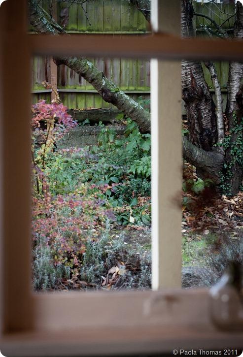 wintergarden (1 of 1)