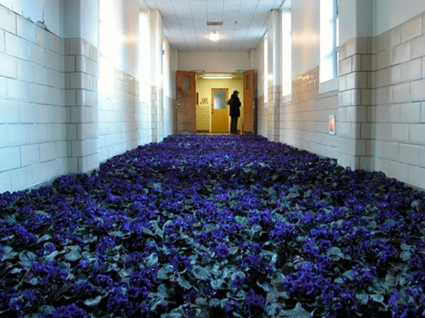 BLOOM-by-Anna-Schuleit-Blue-Hallway