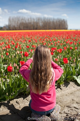 washington-tulip-festival (7 of 17)