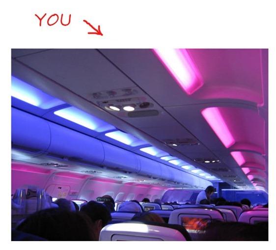 virgin-airlines-cabin