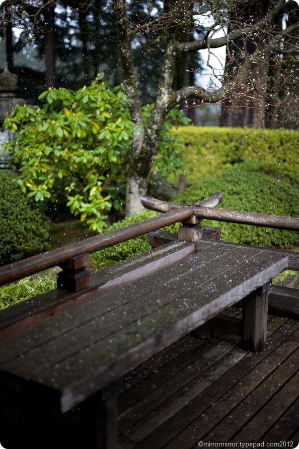 portland-japanese-garden (9 of 12)