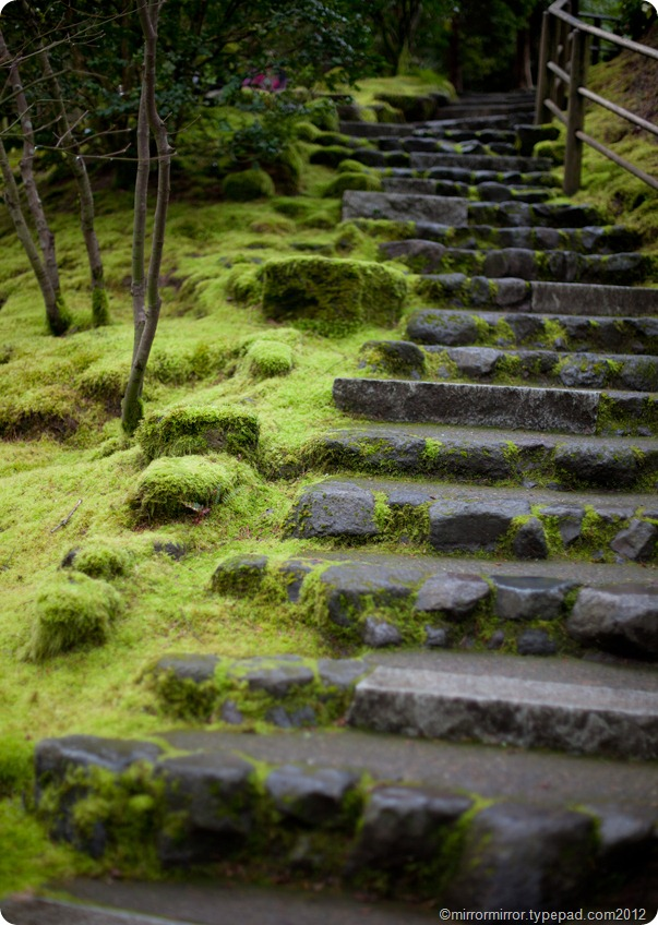 portland-japanese-garden (8 of 12)