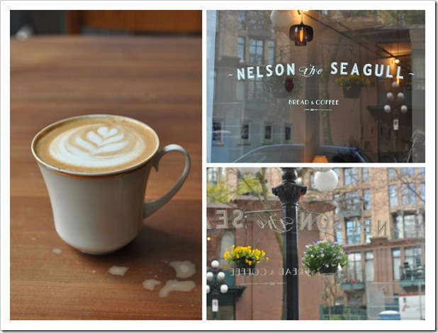 nelson-the-seagull