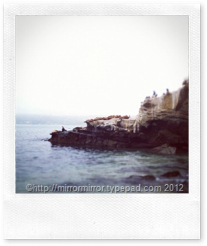 delmar-california (17 of 25)