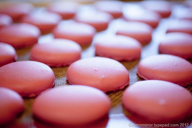raspberry-macarons-10