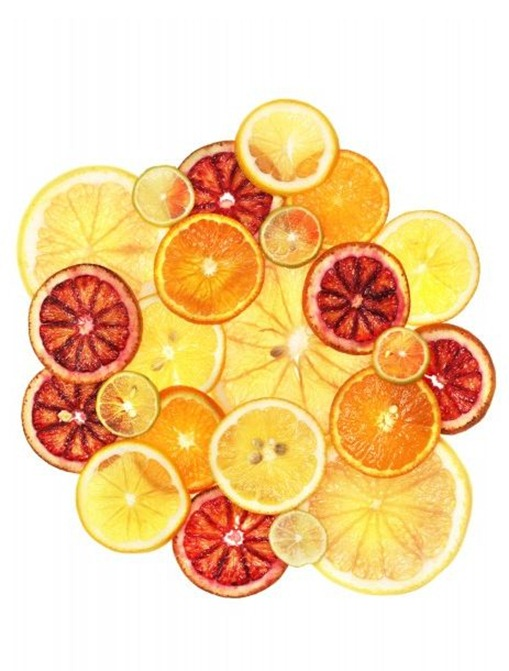 charlotte-omnes-citrus1