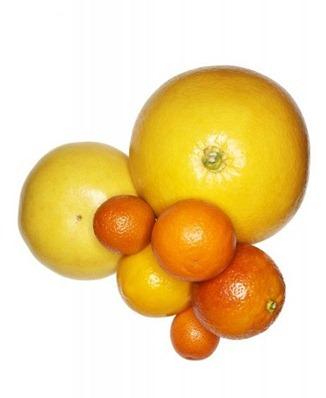 charlotte-omnes-citrus