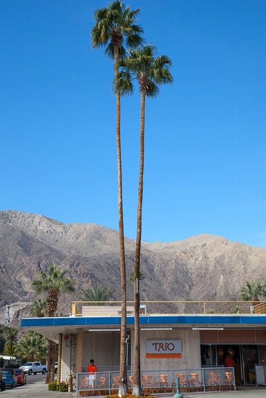 palmspringsuptowndesigndistrict-15