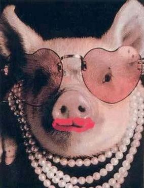 lipstick_on_a_pig